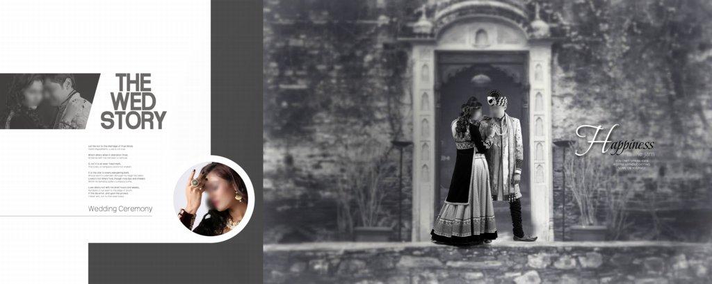 12X30 Wedding Album Design